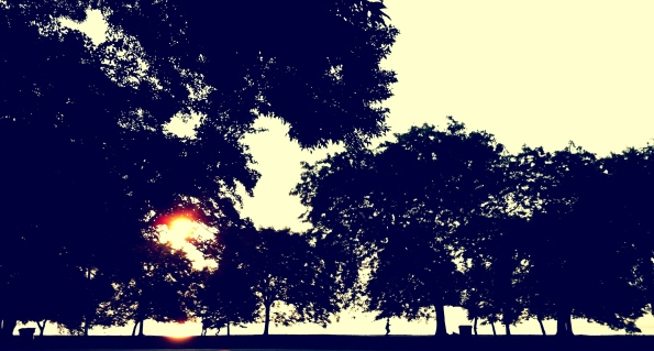 Lincoln Park 06/26/12
