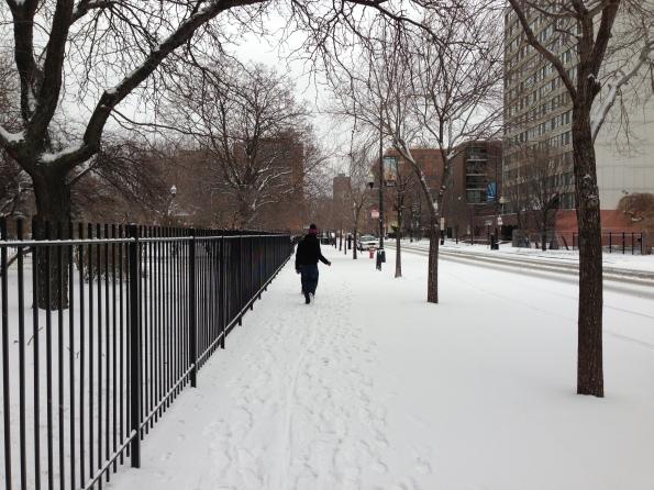Snow Daze V