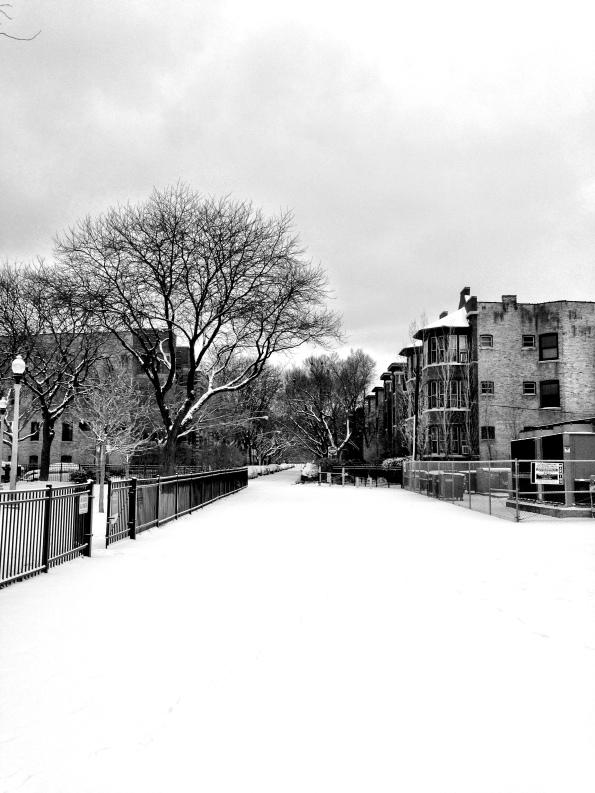 Snow Daze IX