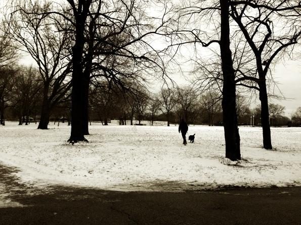 Snow Daze X