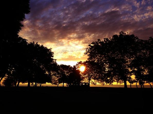 Shoreline Park Cloudscape 19