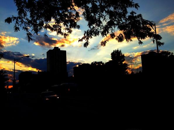 Foster Avenue 8.1.13 (I)