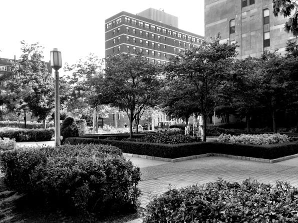 Loyola University Courtyard II