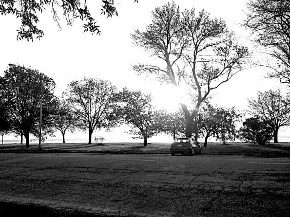 5.20.14 Shoreline Park B & W